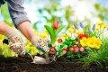 Czytaj więcej: Slow life a wiosenne porządki