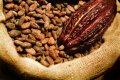 Czytaj więcej: Podróż kakao przez europejskie pałace – część 1: Czekolada z kwiatami jaśminu