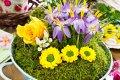 Czytaj więcej: Wiosenna terapia kolorami