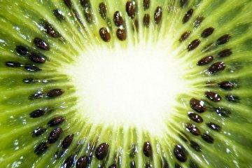 fot.GraphicStock.com